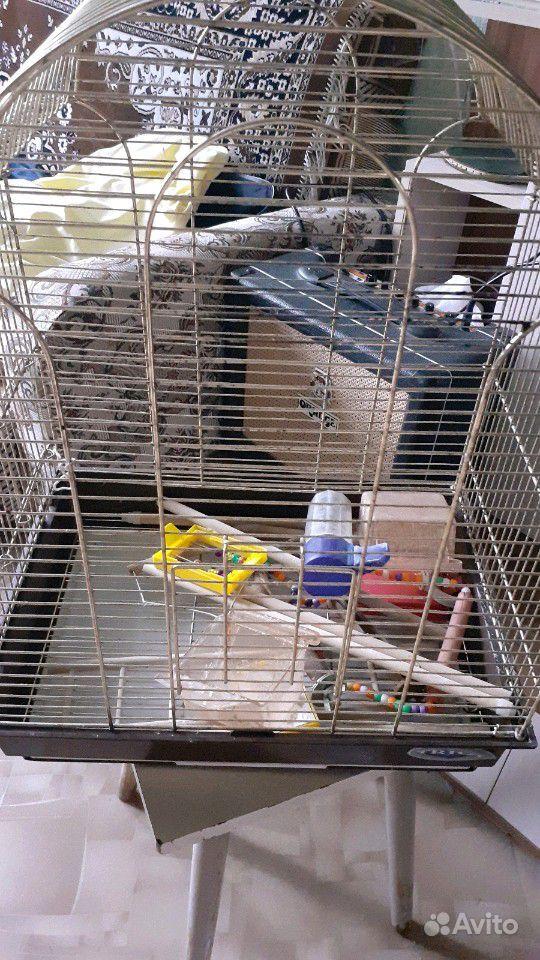 Клетка для попугаев(с перекладинами, поилками, кор