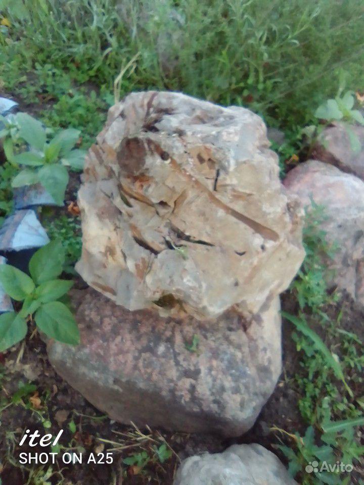 Камень дракона купить на Зозу.ру - фотография № 3