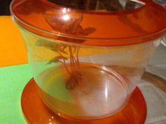Аквариум для рыбки+искус водоросль+сочек