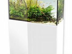 Аквариум Aquael glossy 100 белый 215л с тумбой