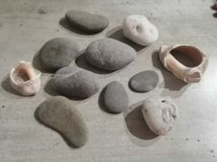 Ракушки и камушки с моря
