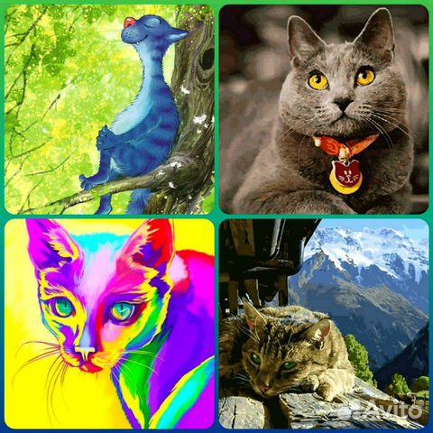 картины раскраски по номерам котики купить в санкт
