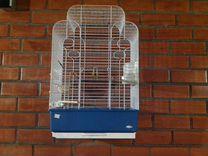 Продам пару корпел и розелл с большой клеткой — Птицы в Геленджике
