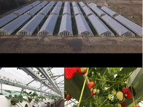 Партнерские инвестиции в сельское хозяйство