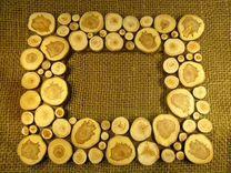 Спилы деревьев (дуб, осина, хвойные и другие) для